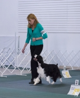 Heeling during a Rally Excellent class.