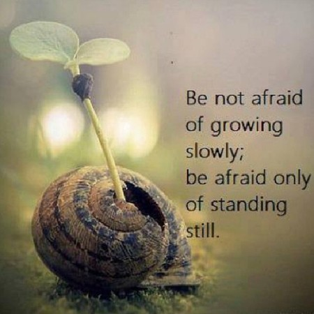 Be-not-afraid-of-growing